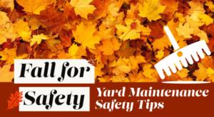 Yard Maintenance Safety Tips