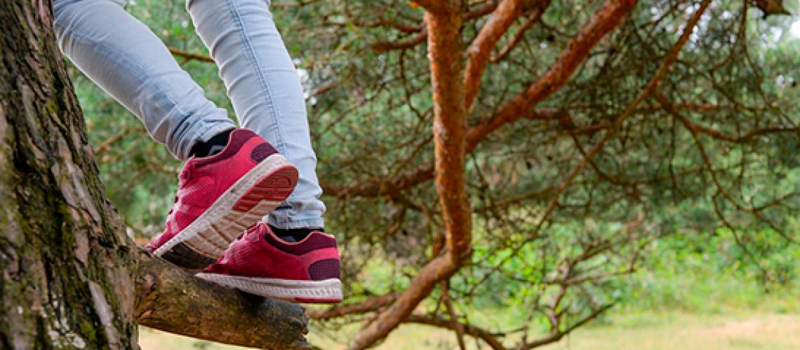 loadshackle-tree-climbing